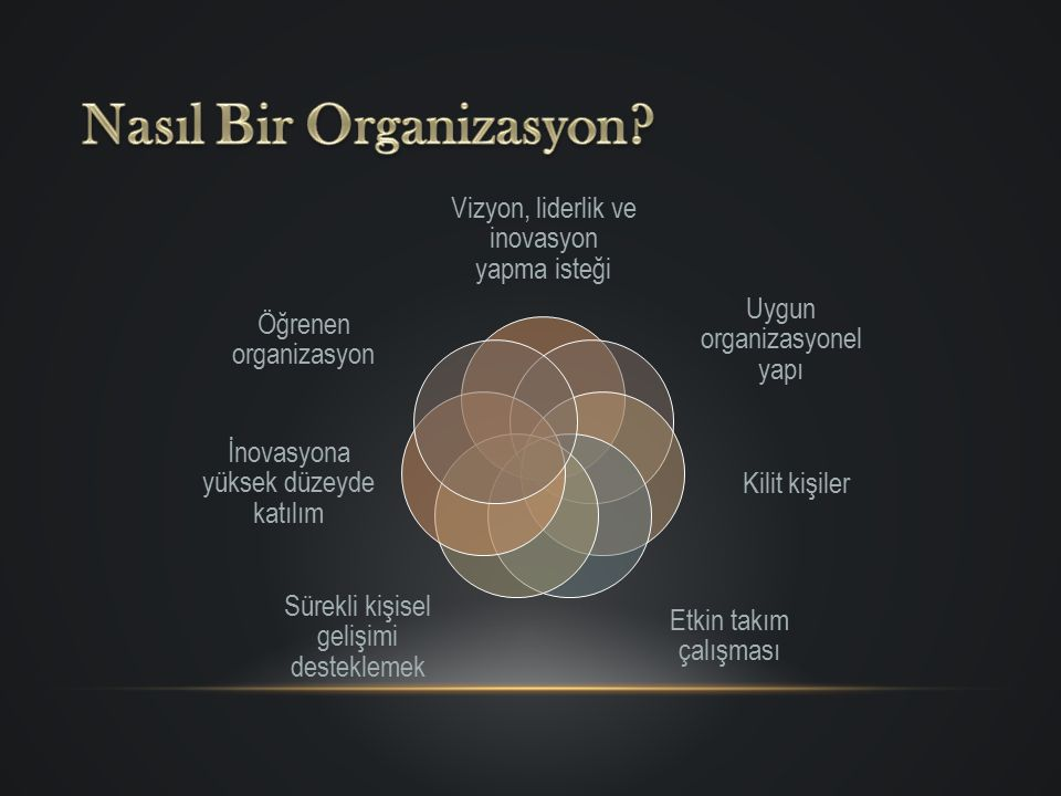 Nasıl Bir Organizasyon