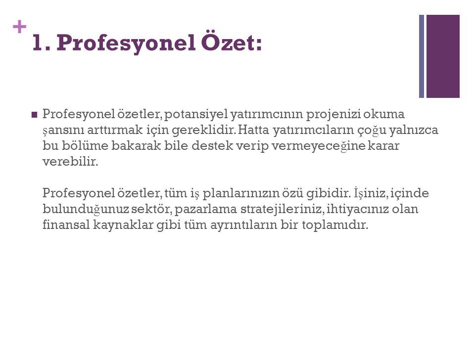 1. Profesyonel Özet: