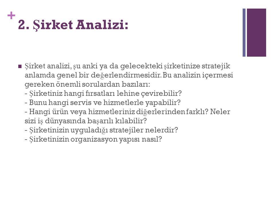 2. Şirket Analizi: