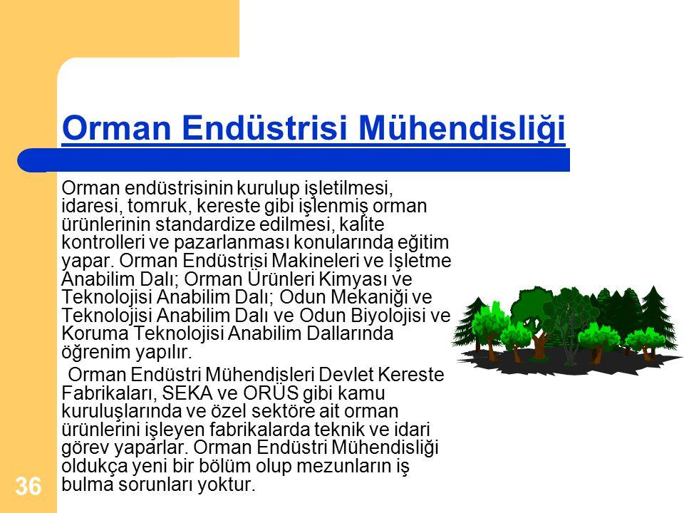 Orman Endüstrisi Mühendisliği
