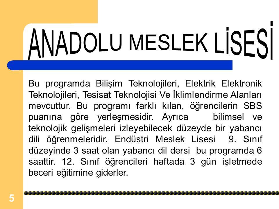 ANADOLU MESLEK LİSESİ