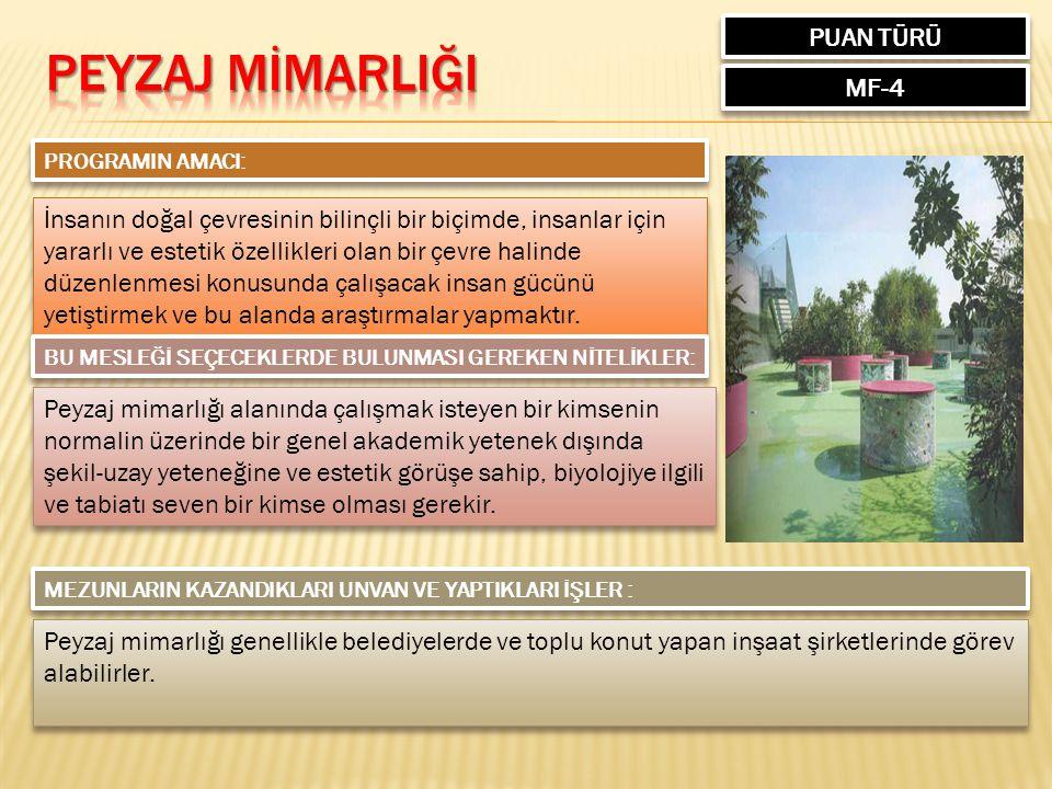 PEYZAJ MİMARLIĞI PUAN TÜRÜ MF-4
