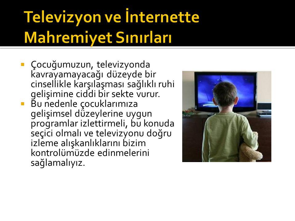 Televizyon ve İnternette Mahremiyet Sınırları