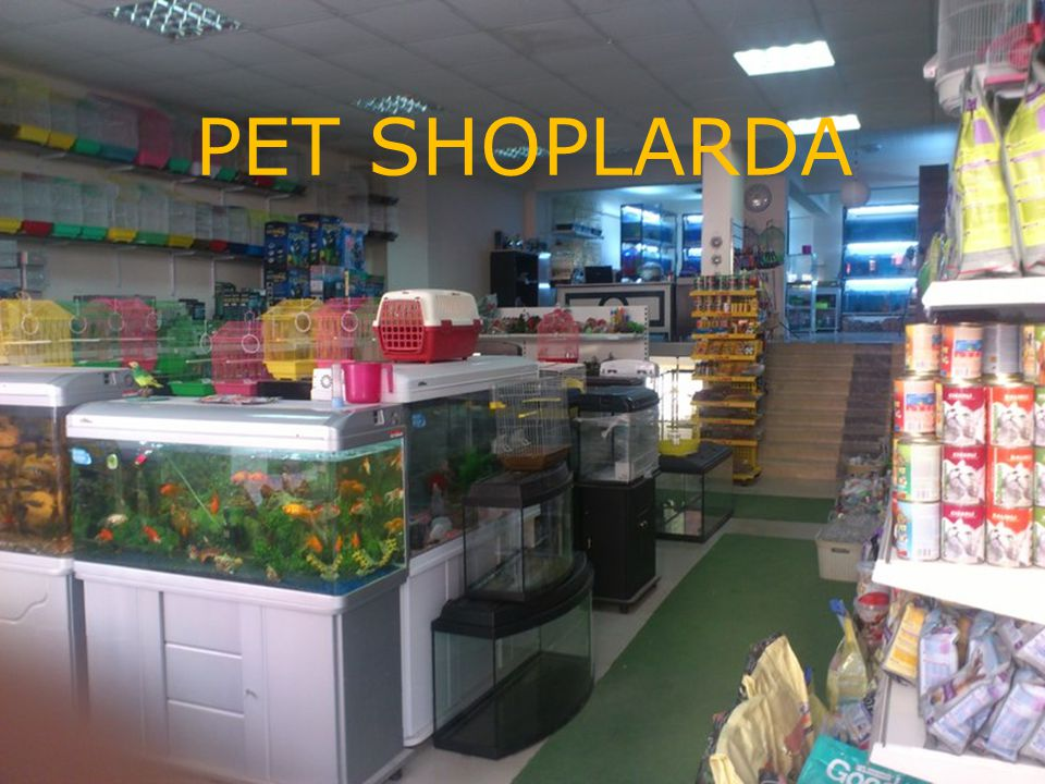 PET SHOPLARDA