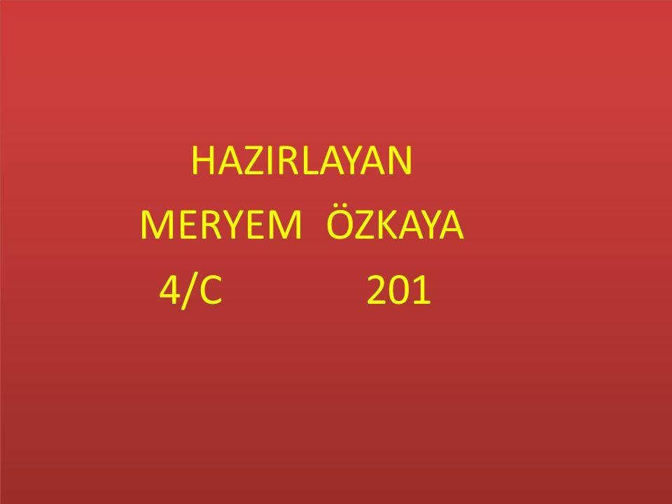 HAZIRLAYAN MERYEM ÖZKAYA 4/C 201