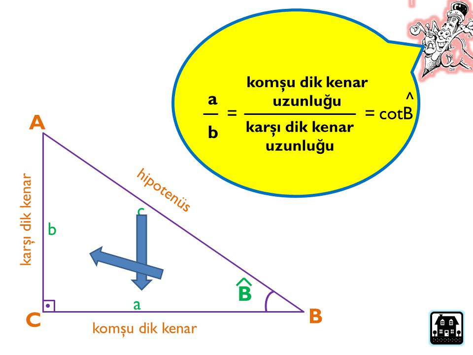 A B B C cotB a ^ = = b c b a komşu dik kenar uzunluğu karşı dik kenar
