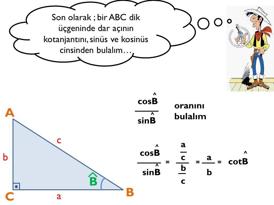 Son olarak ; bir ABC dik üçgeninde dar açının kotanjantını, sinüs ve kosinüs cinsinden bulalım…