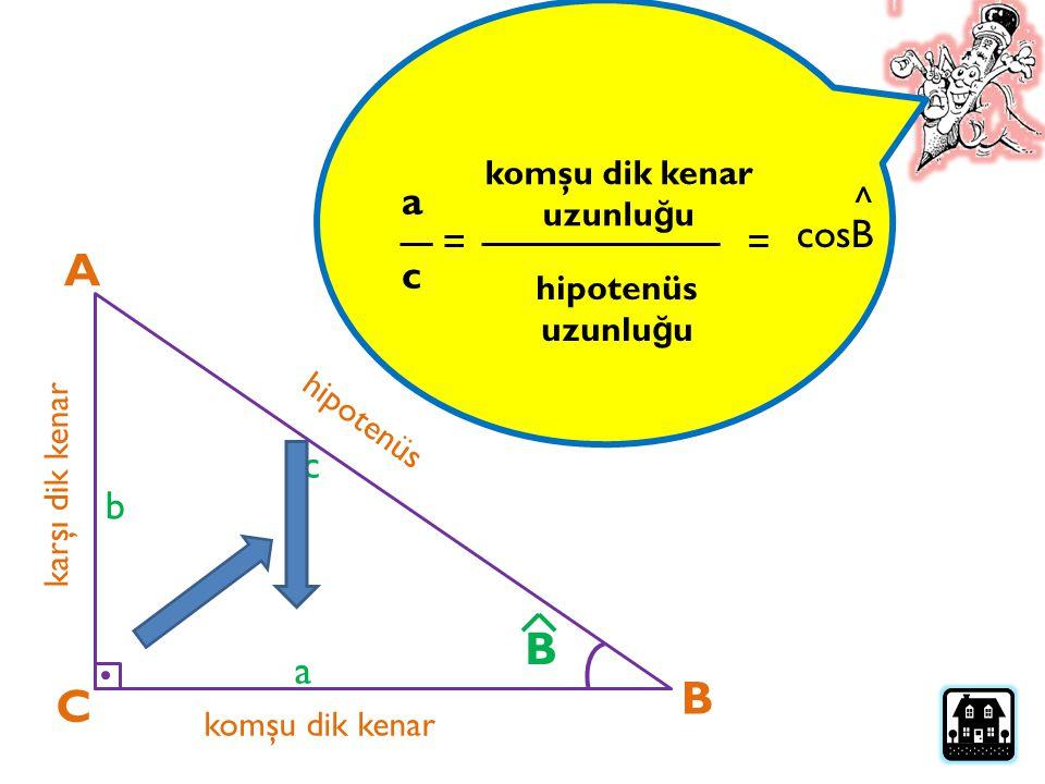 A B B C a ^ cosB = = c c b a komşu dik kenar uzunluğu