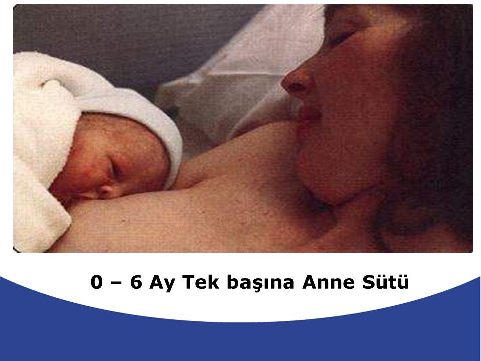 0 – 6 Ay Tek başına Anne Sütü