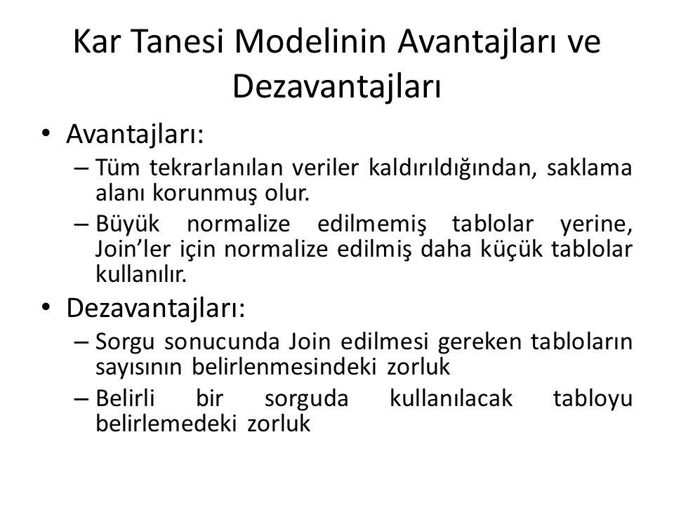 Kar Tanesi Modelinin Avantajları ve Dezavantajları