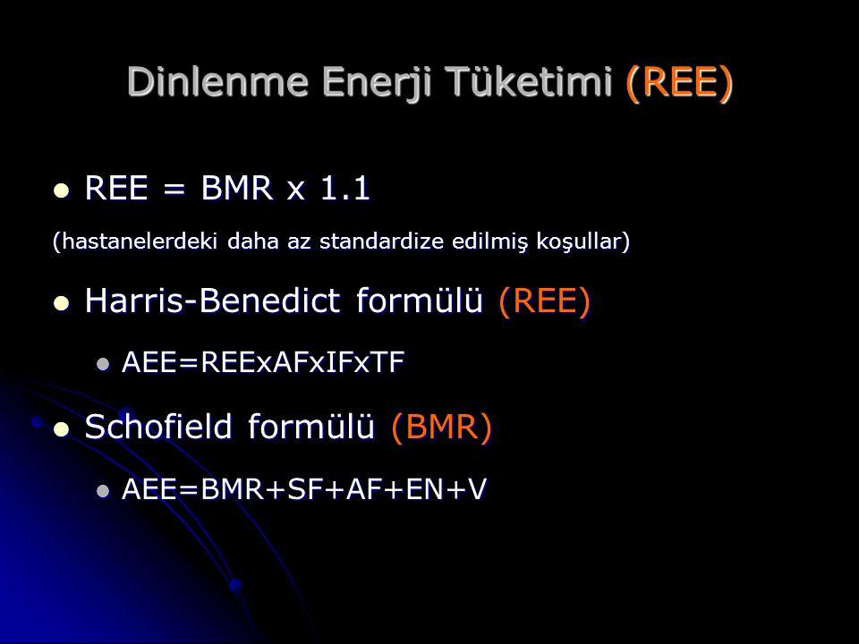 Dinlenme Enerji Tüketimi (REE)