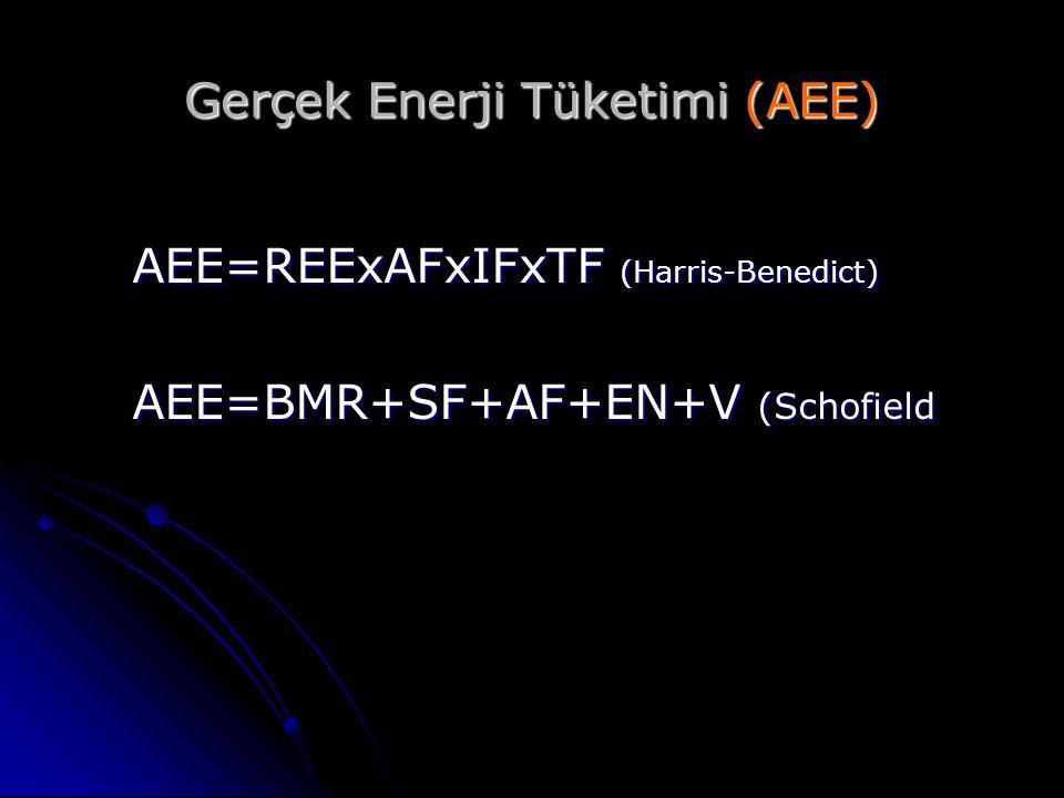 Gerçek Enerji Tüketimi (AEE)