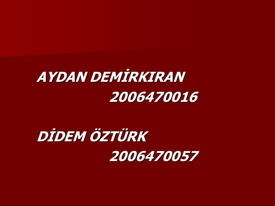 AYDAN DEMİRKIRAN 2006470016 DİDEM ÖZTÜRK 2006470057