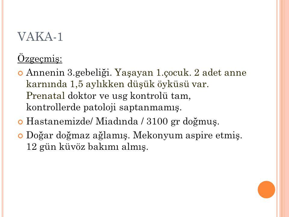 VAKA-1 Özgeçmiş: