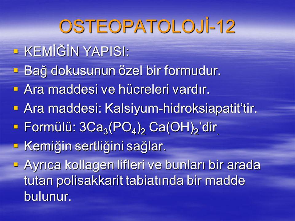 OSTEOPATOLOJİ-12 KEMİĞİN YAPISI: Bağ dokusunun özel bir formudur.