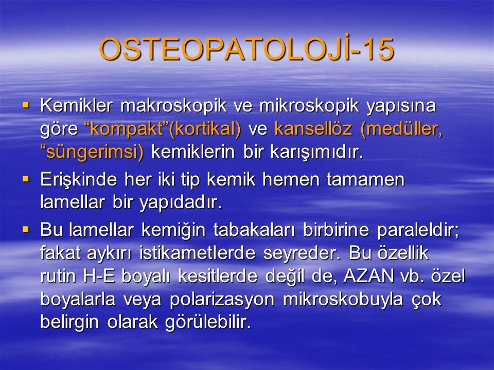OSTEOPATOLOJİ-15