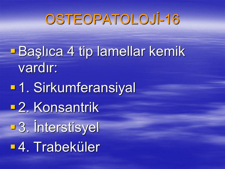 OSTEOPATOLOJİ-16 Başlıca 4 tip lamellar kemik vardır: 1. Sirkumferansiyal. 2. Konsantrik. 3. İnterstisyel.