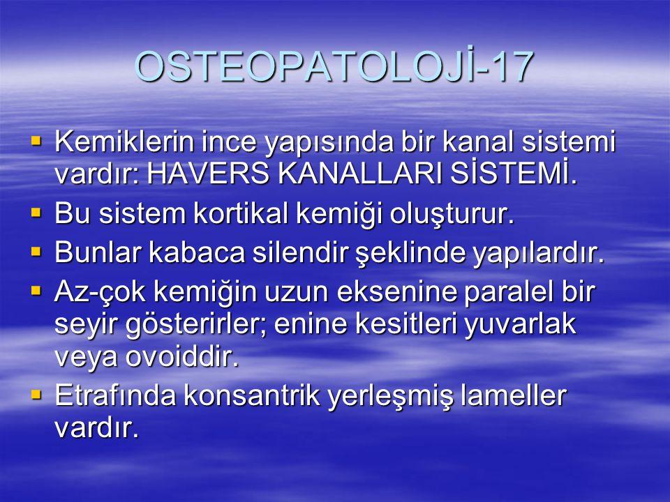 OSTEOPATOLOJİ-17 Kemiklerin ince yapısında bir kanal sistemi vardır: HAVERS KANALLARI SİSTEMİ. Bu sistem kortikal kemiği oluşturur.