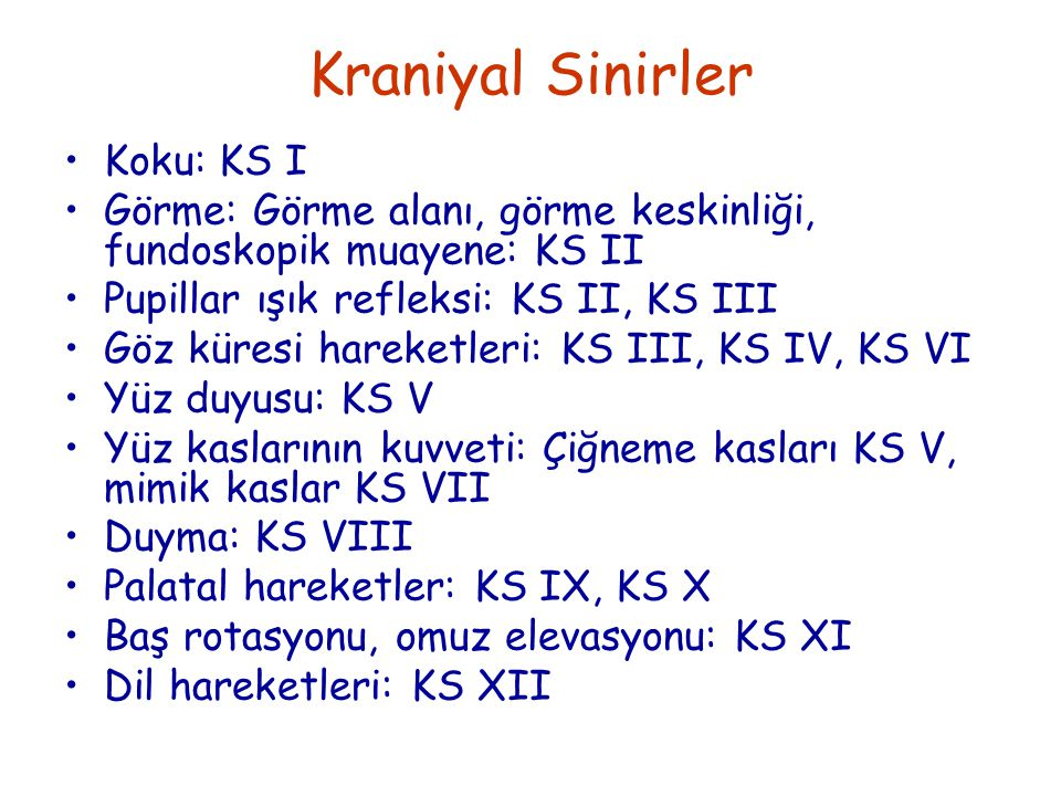 Kraniyal Sinirler Koku: KS I