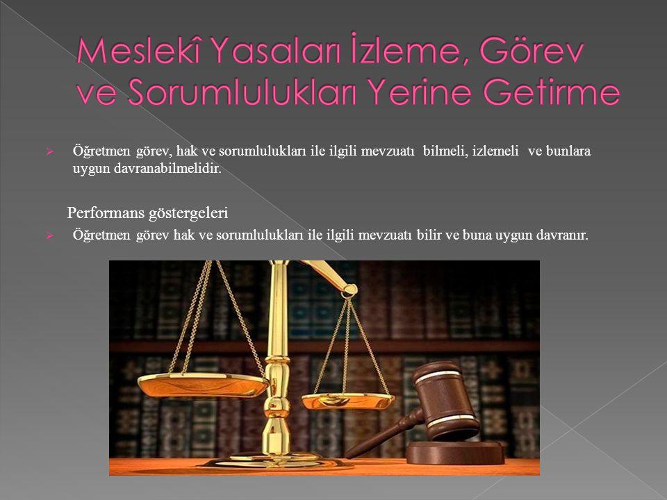 Meslekî Yasaları İzleme, Görev ve Sorumlulukları Yerine Getirme