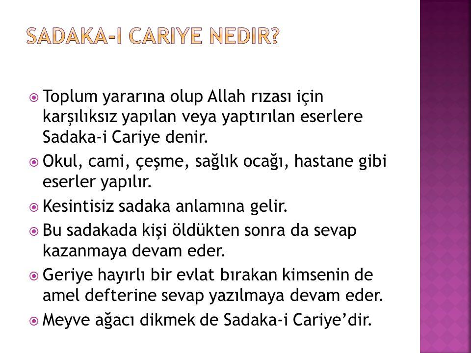 Sadaka-i Cariye nedir Toplum yararına olup Allah rızası için karşılıksız yapılan veya yaptırılan eserlere Sadaka-i Cariye denir.