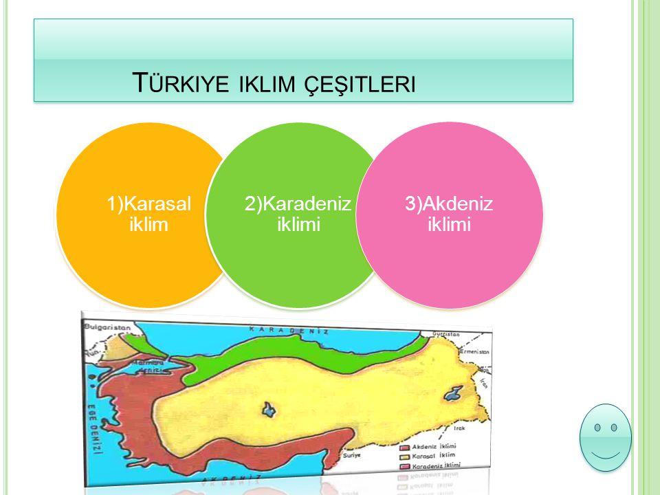 Türkiye iklim çeşitleri
