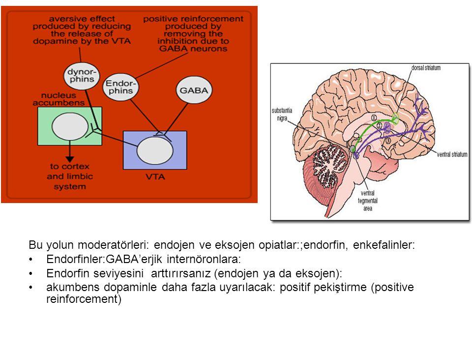 Bu yolun moderatörleri: endojen ve eksojen opiatlar:;endorfin, enkefalinler: