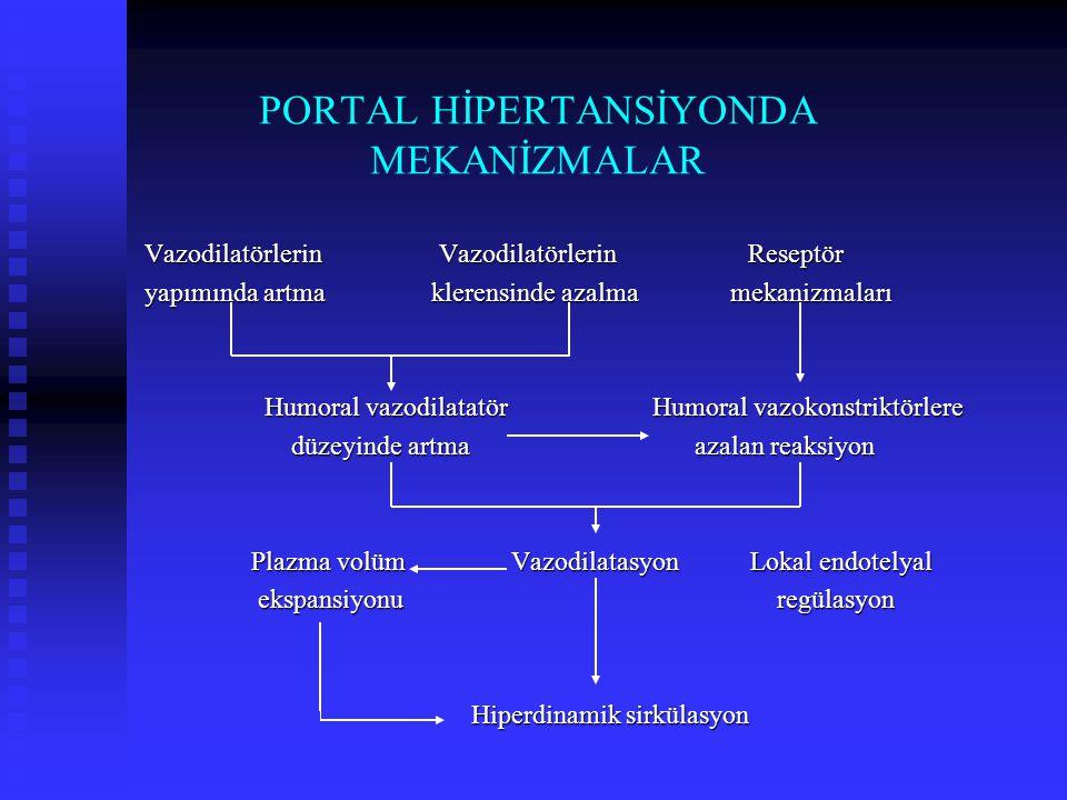 PORTAL HİPERTANSİYONDA MEKANİZMALAR