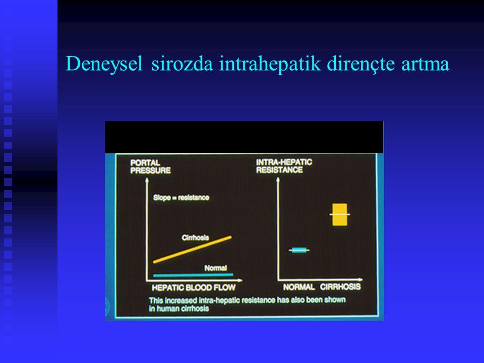 Deneysel sirozda intrahepatik dirençte artma