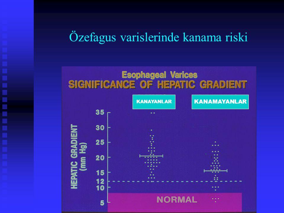 Özefagus varislerinde kanama riski