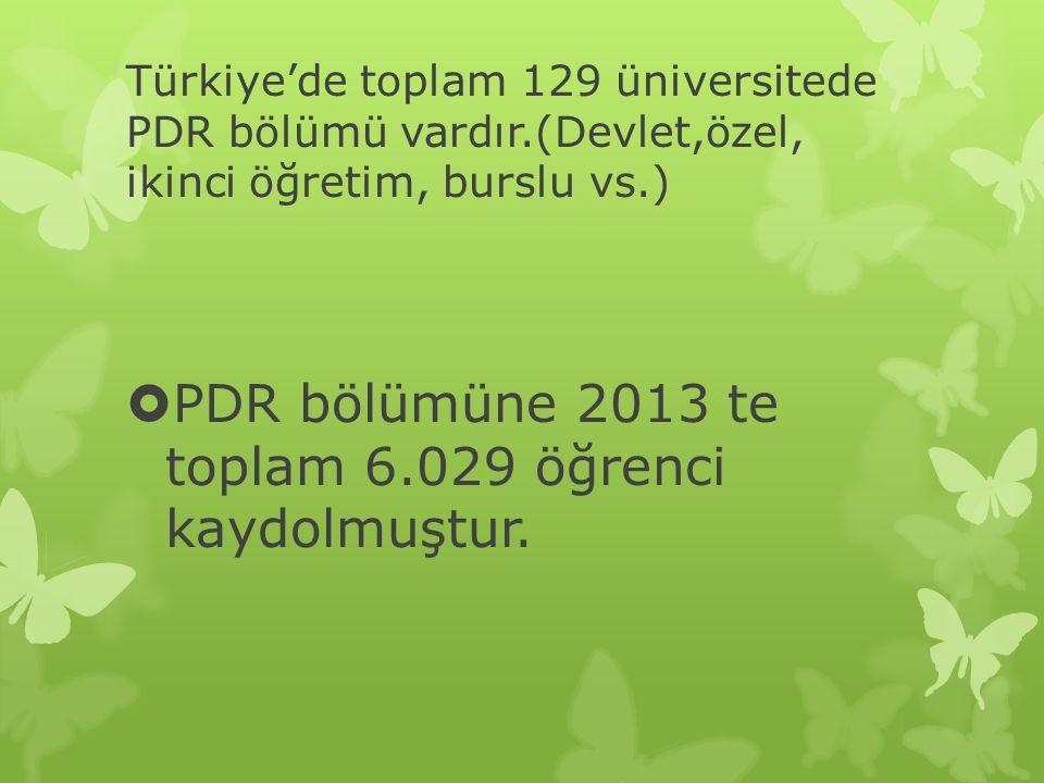PDR bölümüne 2013 te toplam 6.029 öğrenci kaydolmuştur.