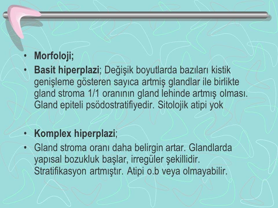 Morfoloji;