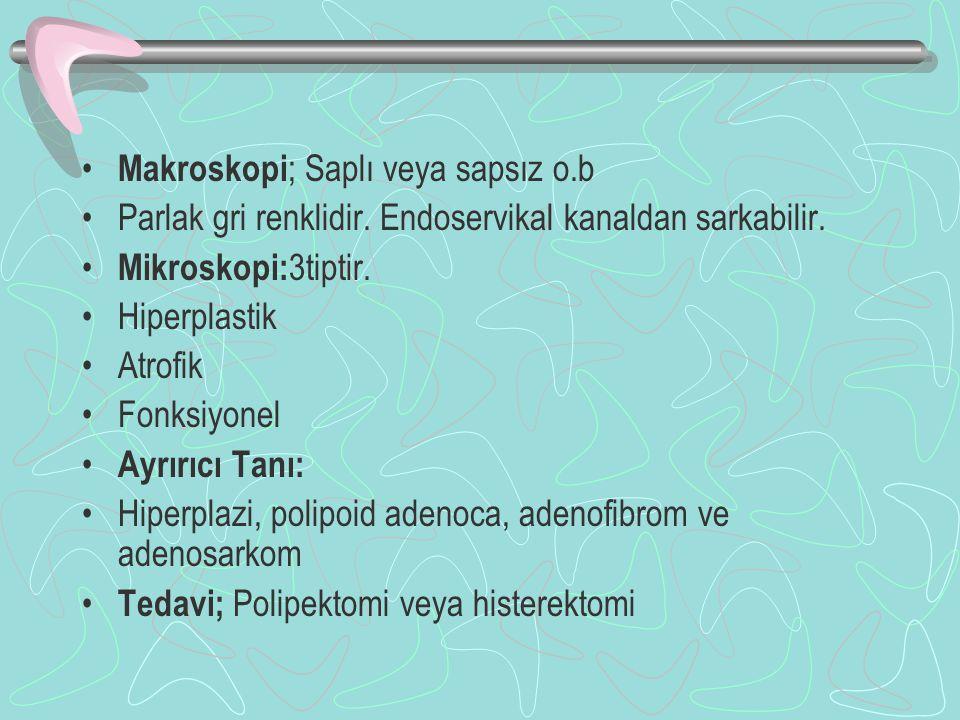 Makroskopi; Saplı veya sapsız o.b