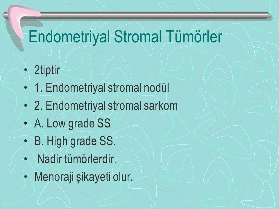 Endometriyal Stromal Tümörler