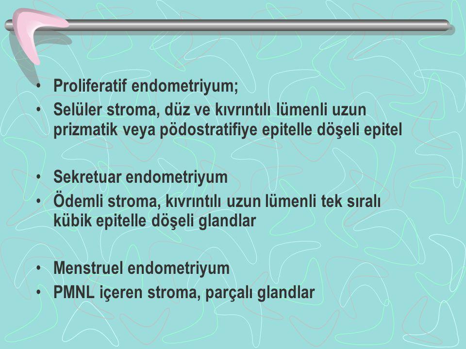 Proliferatif endometriyum;