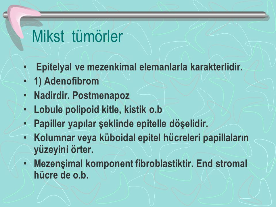 Mikst tümörler Epitelyal ve mezenkimal elemanlarla karakterlidir.