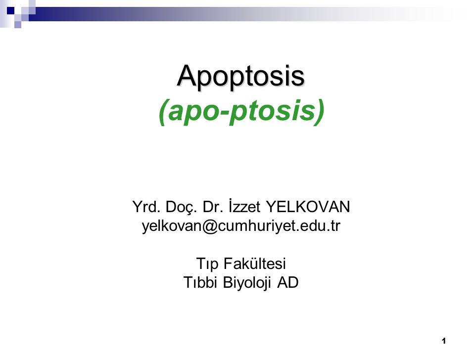 Apoptosis (apo-ptosis) Yrd. Doç. Dr.