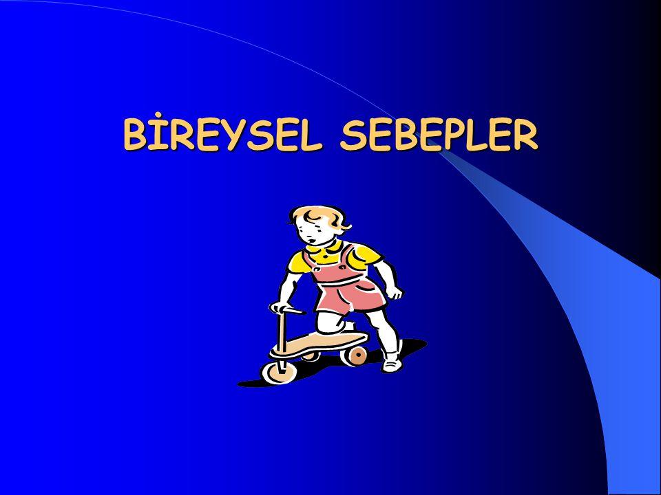 BİREYSEL SEBEPLER