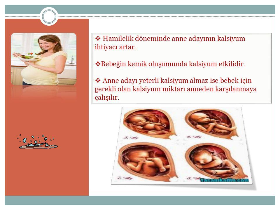 Hamilelik döneminde anne adayının kalsiyum ihtiyacı artar.