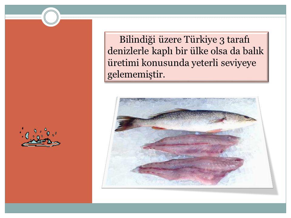 Bilindiği üzere Türkiye 3 tarafı denizlerle kaplı bir ülke olsa da balık üretimi konusunda yeterli seviyeye gelememiştir.