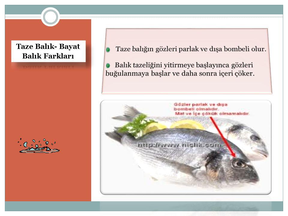Taze Balık- Bayat Balık Farkları