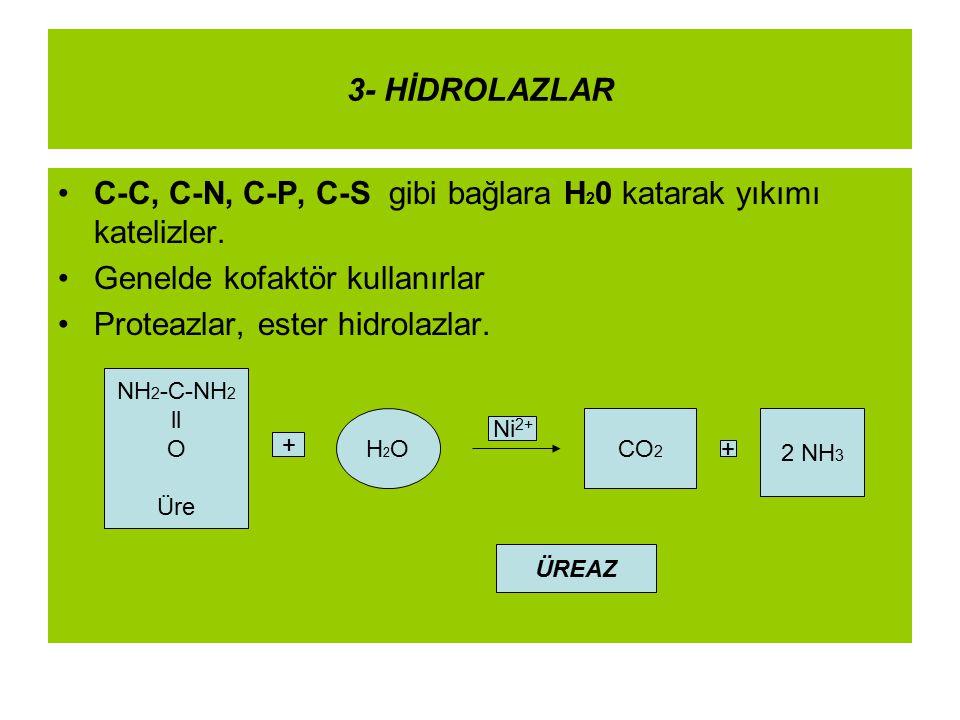 C-C, C-N, C-P, C-S gibi bağlara H20 katarak yıkımı katelizler.