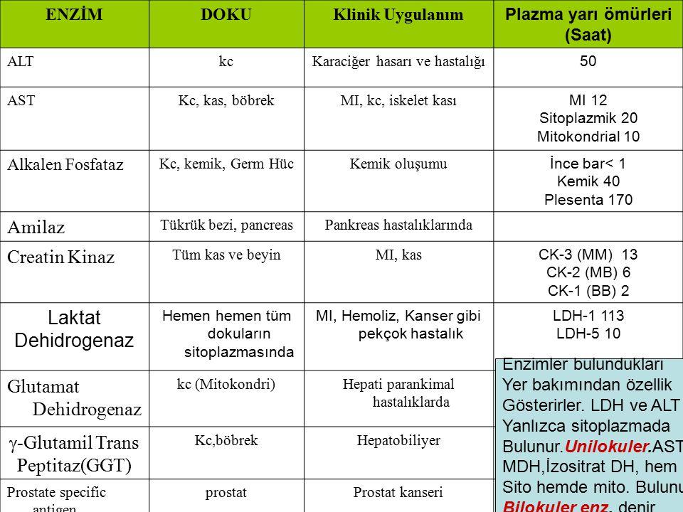 Glutamat Dehidrogenaz g-Glutamil Trans Peptitaz(GGT)