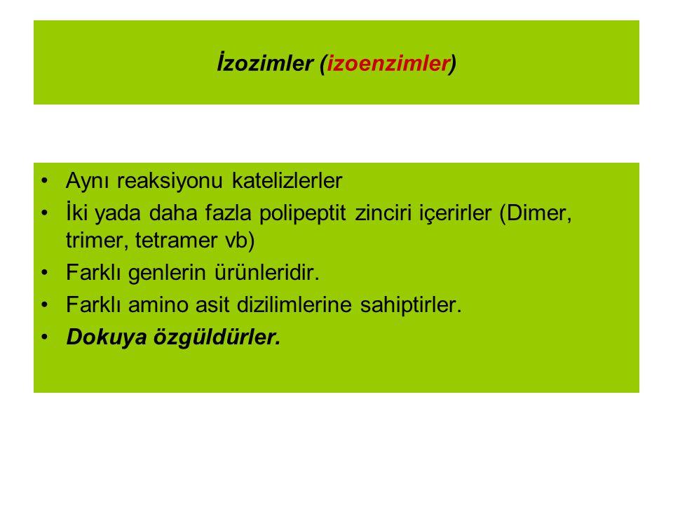 İzozimler (izoenzimler)