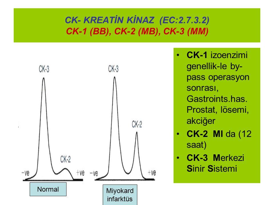 CK- KREATİN KİNAZ (EC:2.7.3.2) CK-1 (BB), CK-2 (MB), CK-3 (MM)