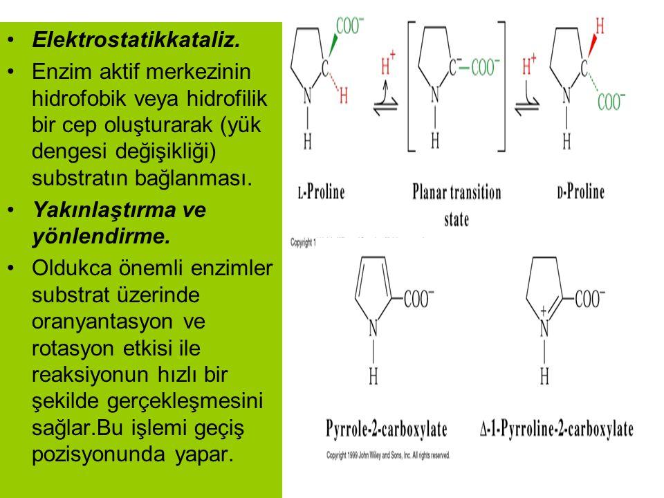 Elektrostatikkataliz.