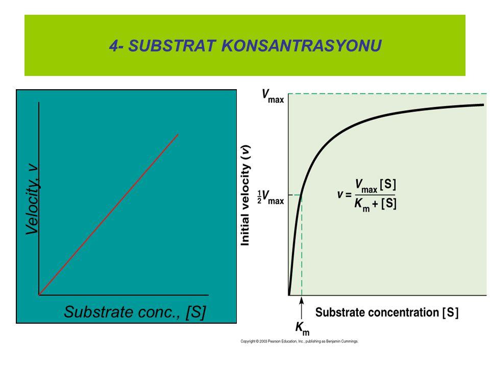 4- SUBSTRAT KONSANTRASYONU
