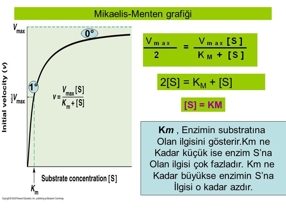 Mikaelis-Menten grafiği