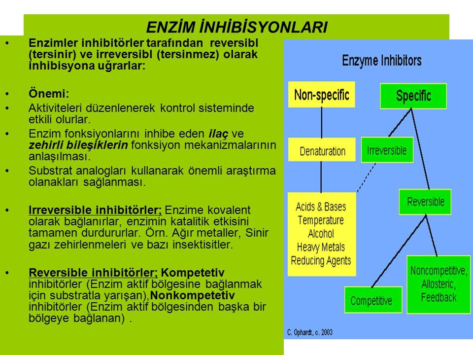 ENZİM İNHİBİSYONLARI Enzimler inhibitörler tarafından reversibl (tersinir) ve irreversibl (tersinmez) olarak inhibisyona uğrarlar: