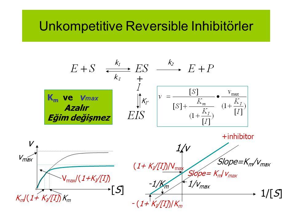 Unkompetitive Reversible Inhibitörler